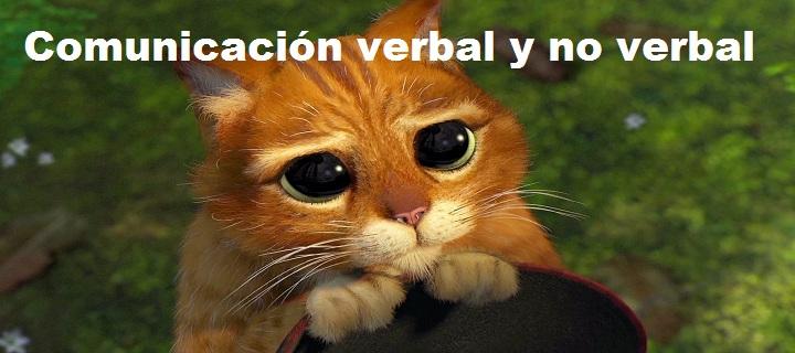 4.3.- Comunicación verbal y no verbal